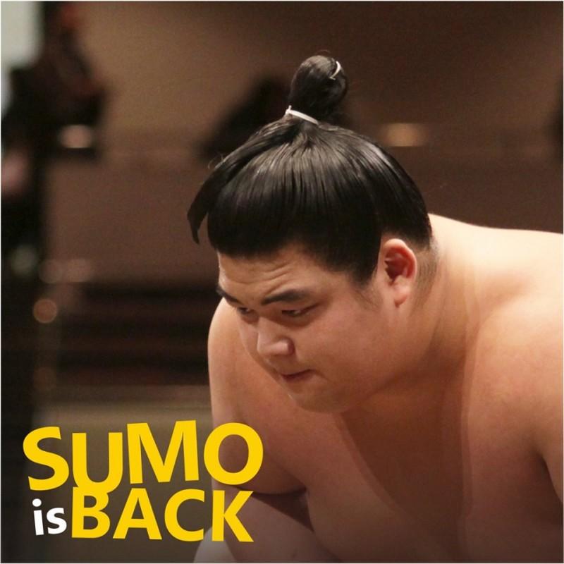 Rencanakan Petualangan Wisata di Jogja Dengan SUMO